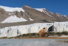 Photo of Станет ли Антарктида зелёной?»