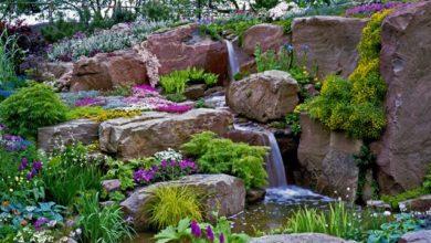 Photo of Садовый «Стонхендж». Как создать скалистую местность на участке?»