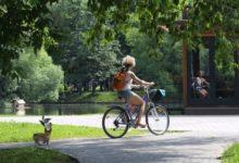 Photo of До 28 градусов тепла ожидается в Москве в четверг»