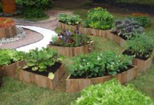 Photo of Супертренд– борщ вцветах. Создаём композиции из овощных культур»