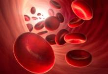 Photo of Что за клетки эритроциты и какую функцию они выполняют?»