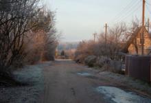 Photo of Календарь дачника-2020: Ноябрь.