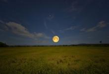 Photo of Лунный календарь садовода иогородника с 18 по 27 апреля.