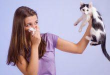 Photo of Вдох – выдох. Как изменилось лечение бронхиальной астмы»