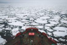 Photo of Северный ядовитый. С ростом температур океан становится всё кислее»