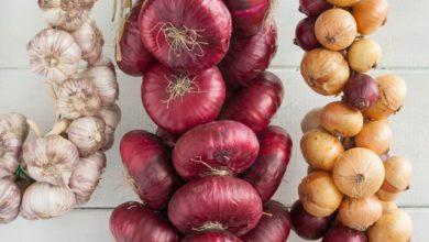 Photo of Внимание на температуру и влажность. Как хранить урожай лука и чеснока?»