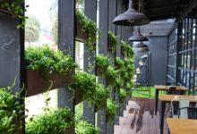 Photo of Зелёный дизайн. Как используют в городском пейзаже вертикальные сады»