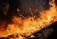 Photo of Экстренное предупреждение из-за угрозы лесных пожаров объявлено на Колыме»