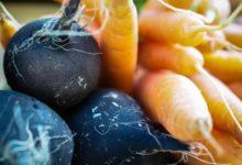 Photo of Время корнеплодов. Пора сеять морковь иредьку»