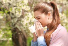 Photo of Чихали на лето. В этом году аллергиков стало больше»