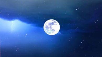 Photo of Лунный календарь садовода и огородника с 26 августа по 8 сентября»