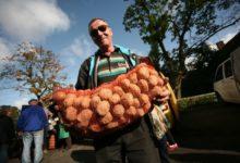 Photo of Как правильно хранить урожай картофеля?»