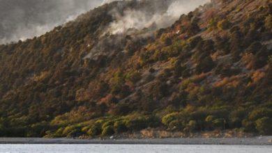 Photo of Спасатели полностью потушили лесной пожар под Анапой»