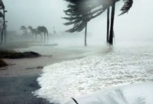 Photo of В КНР объявили желтый уровень опасности из-за приближения шторма «Хагупит»»