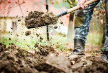 Photo of Подкормить и перекопать. Что делать с грядками, с которых убрали урожай?»