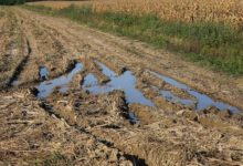 Photo of В Приморье сильные ливни подтопили несколько дорог»