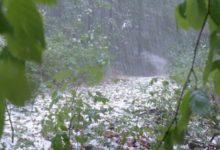 Photo of Вильфанд предупредил об опасной погоде в ряде российских регионов»