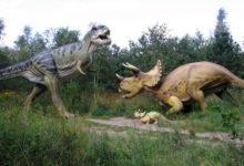 Photo of Болели ли динозавры раком?»