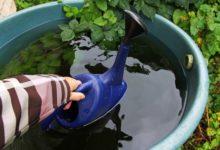 Photo of Как можно использовать дождевую воду?»