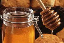 Photo of Не исчезнет ли башкирский мёд?»