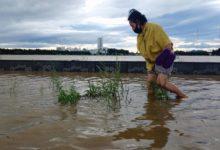 Photo of В Находке ввели режим ЧС из-за тайфуна «Майсак»»