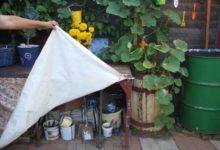 Photo of Сарай, хозблок или стол на свежем воздухе. 3 варианта рабочей зоны на даче»