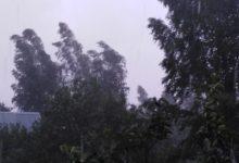 Photo of Синоптики: супертайфун ударит по Приморью быстрее изначального прогноза»