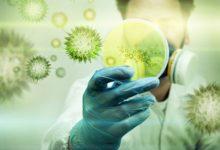 Photo of Вирусные инфекции: как проявляются, лечение и профилактика»