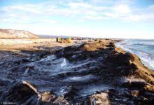 Photo of Глава Камчатки назвал три возможные причины экологического бедствия»