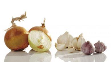 Photo of До какого момента можно сажать озимые: чеснок, лук, морковь и свёклу?»