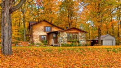 Photo of Осенние работы. Закрываем дачу до весны»