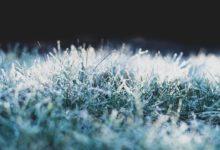 Photo of Синоптик предупредил о первых заморозках на юге России»