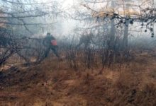 Photo of Пожароопасная обстановка может обостриться в нескольких регионах РФ»