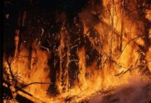 Photo of В Колорадо площадь крупнейшего в истории штата пожара превысила 800 кв. км»