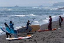 Photo of На камчатском пляже зафиксировали массовый выброс морских животных на сушу»
