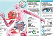 Photo of 50 ошеломительных фактов человеческой физиологии. Инфографика»