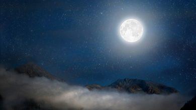 Photo of Лунный календарь садовода иогородника с 10 ноября по 8 декабря»