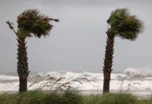 Photo of Тропический шторм «Эта» образовался в Карибском море»