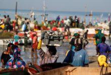 Photo of Что за вспышка неизвестной болезни произошла в Сенегале?»