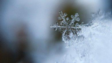 Photo of Синоптик рассказал, какой будет грядущая зима в России»