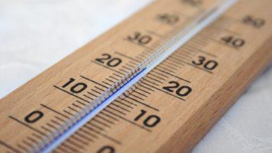 Photo of В МГУ назвали 2020 год самым тёплым в Москве за 240 лет»